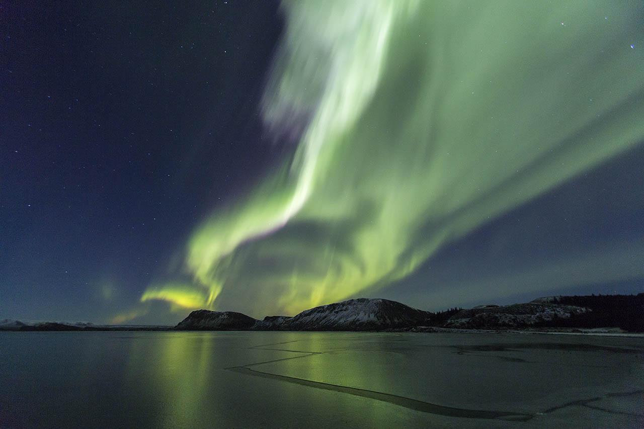 Northern Lights Aurora Borealis Hawk