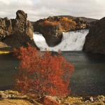Hjalparfoss in fall colours